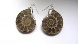 Boucles d'oreilles ammonite